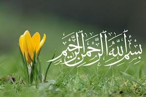 Trust Allah ^_^