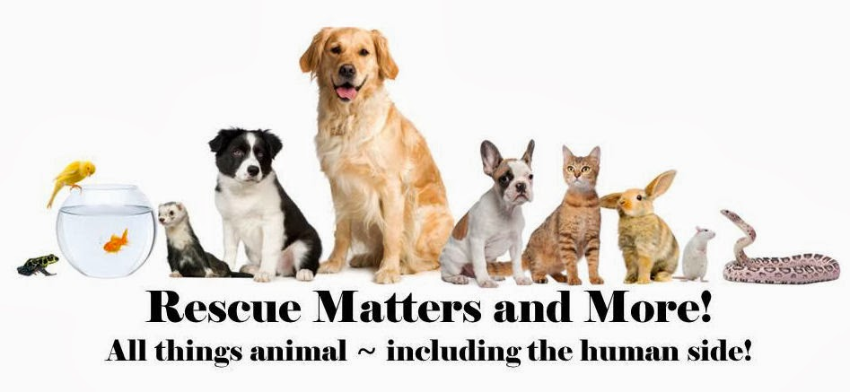 Rescue Matters and More!