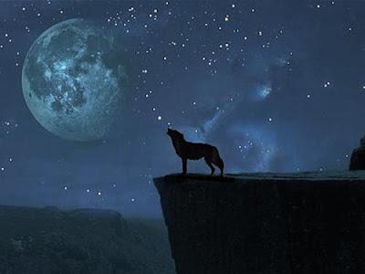 POEMAS SIDERALES ( Sol, Luna, Estrellas, Tierra, Naturaleza, Galaxias...) - Página 5 1244175649097_f