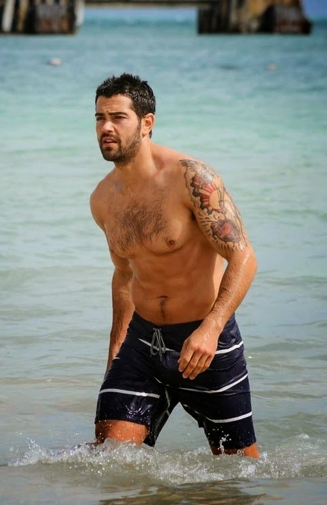 Is jesse metcalfe gay