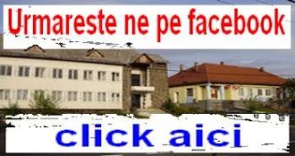 Urmareste ne pe facebook