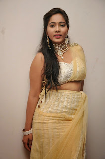 Mitra Pictures in Half Saree at DollorKi Maro Vipu Audio Launch ~ Celebs Next