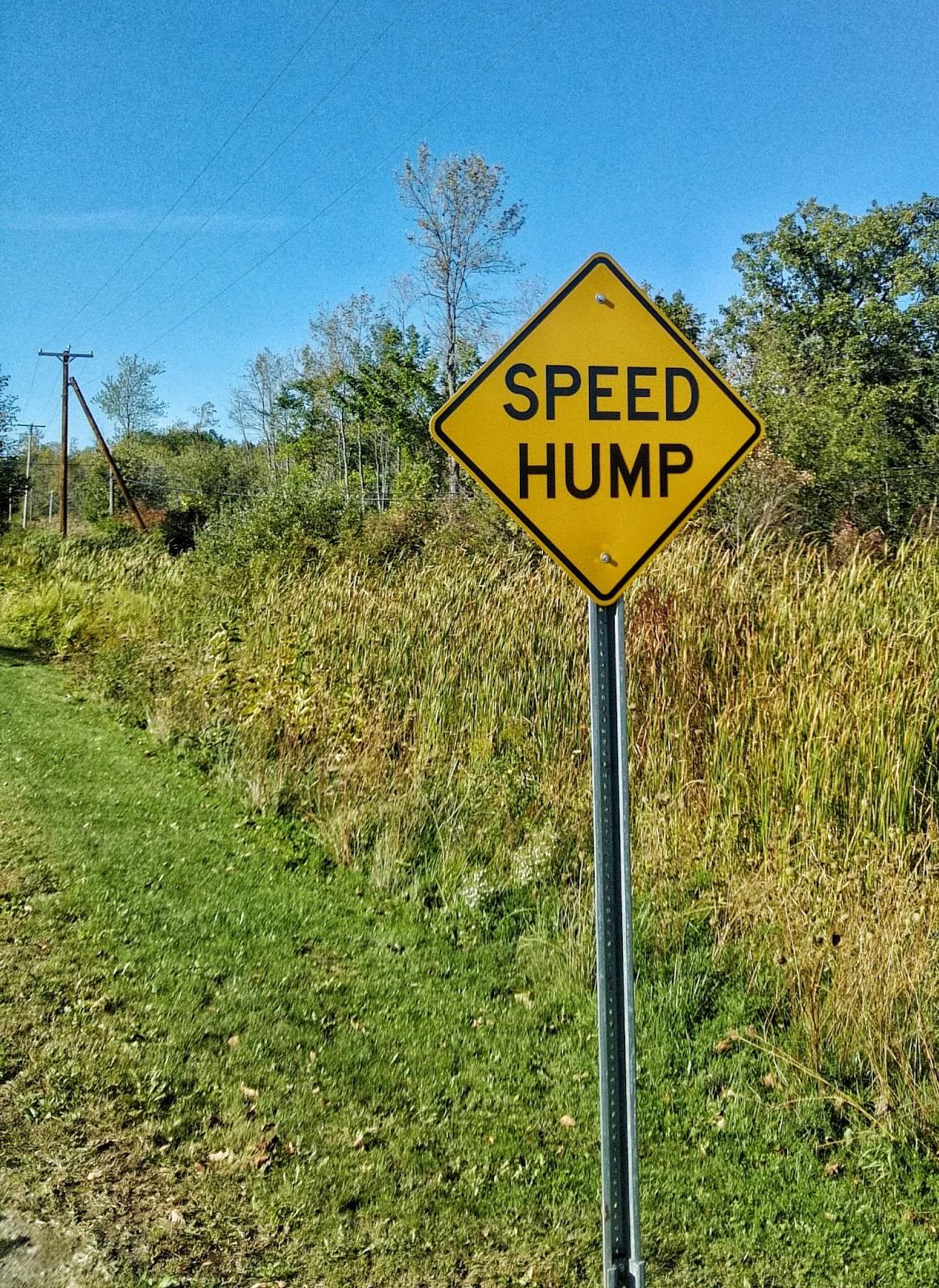 Why are euphemisms bad?