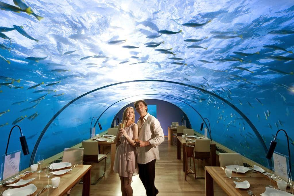 Maldives - The Romantic Luster