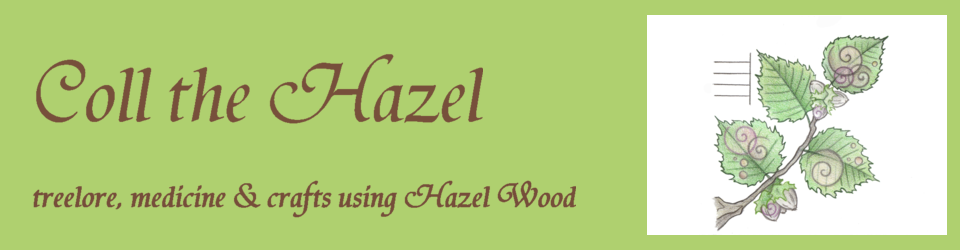 Coll the Hazel