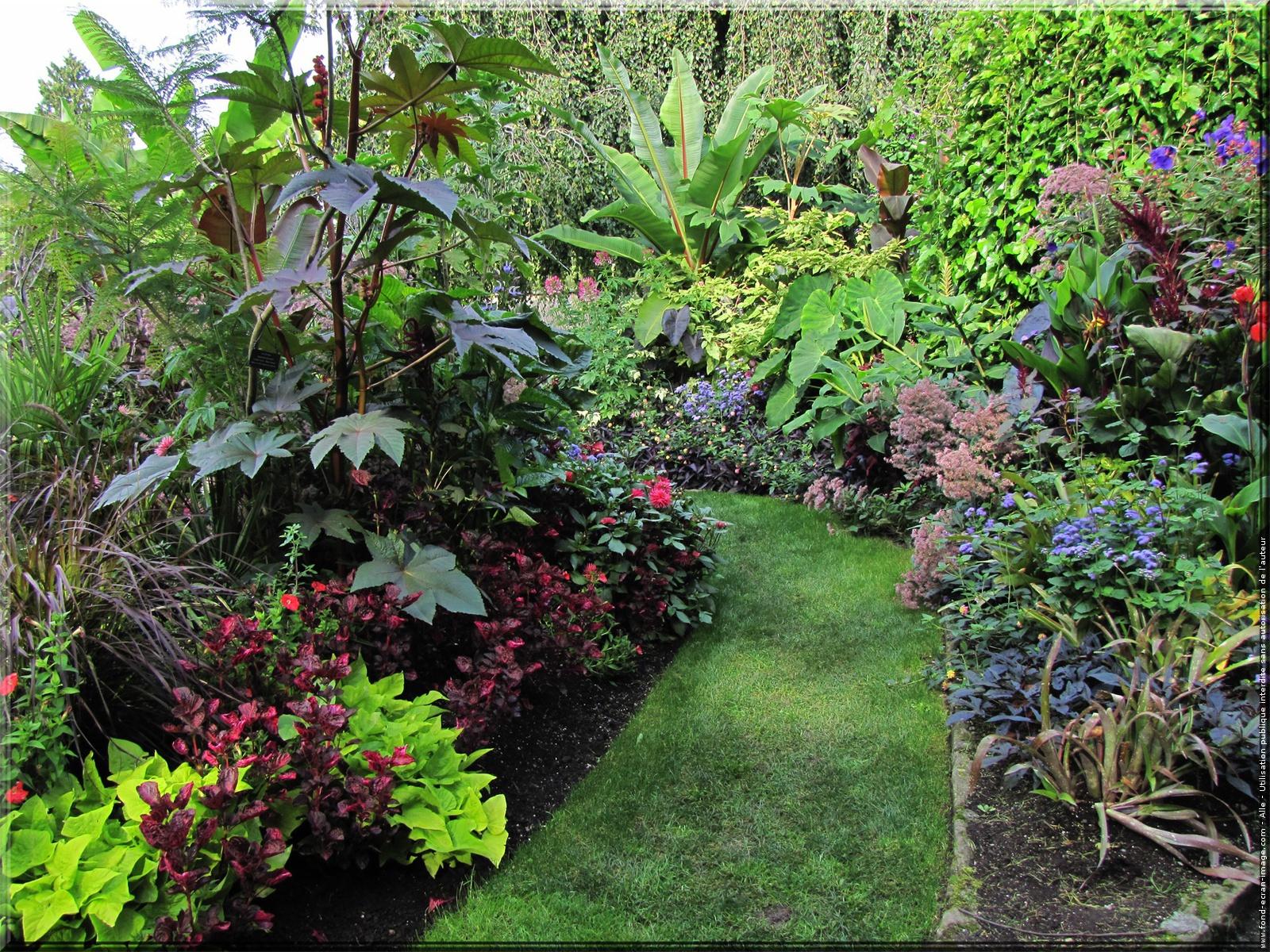 Aimez vous le jardin groupe kenza poly services for Haie jardin anglais