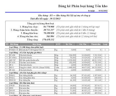 Ban in Tong hop kem Phan loai Kho hang