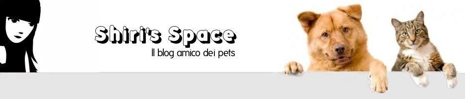 Shiri's Space