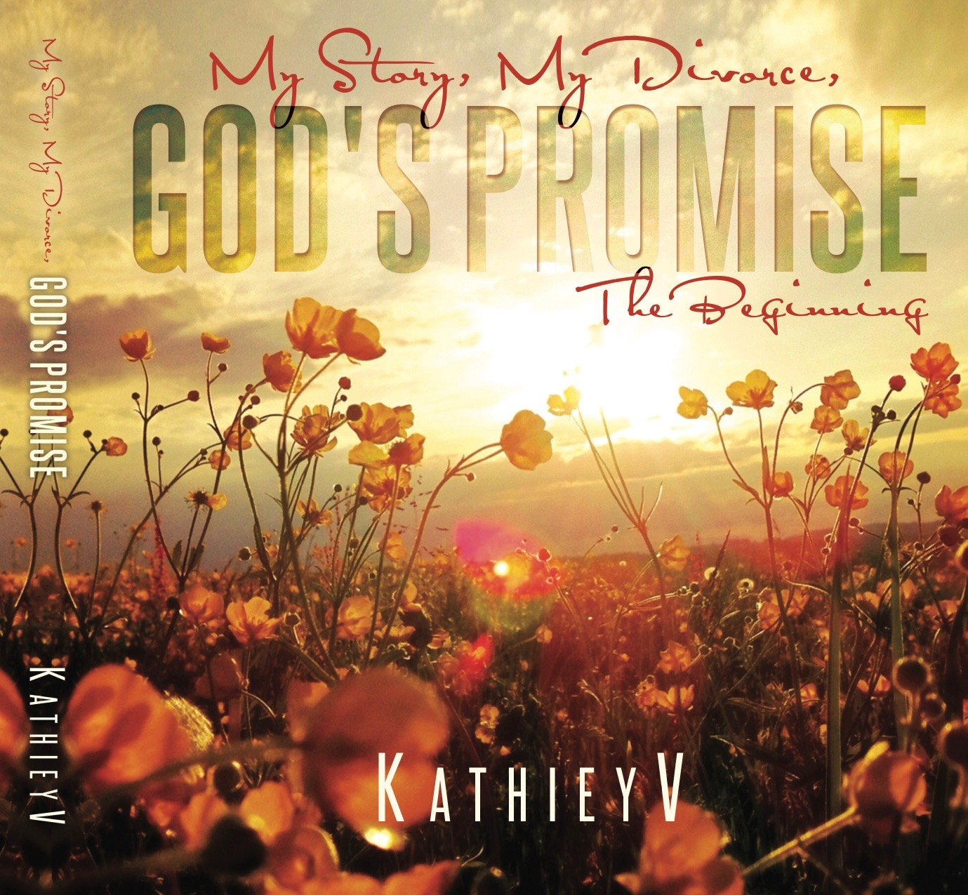 My Story My Divorce God's Promise.  The Beginning