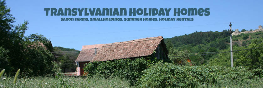 Transylvanian Holiday Homes For Sale