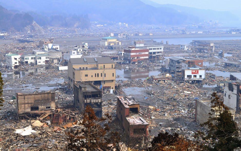 シルバー・カモメール: 東日本 ...