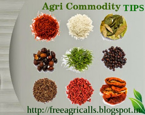 Chana, Dhaniya, cs turmeric, Soyabean, free agri calls, Agri Commodity Tips, Future Trading Tips