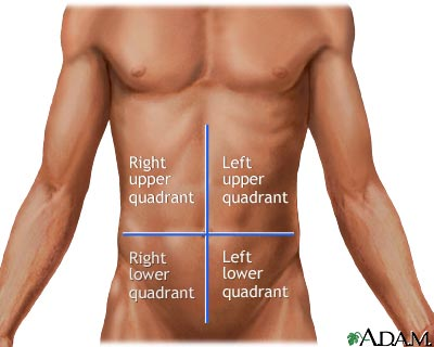 Quadrant Body Nurse Advocate:...