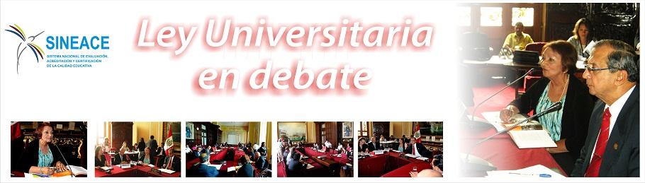 Ley Universitaria en Debate