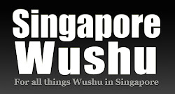 SingaporeWushu.com