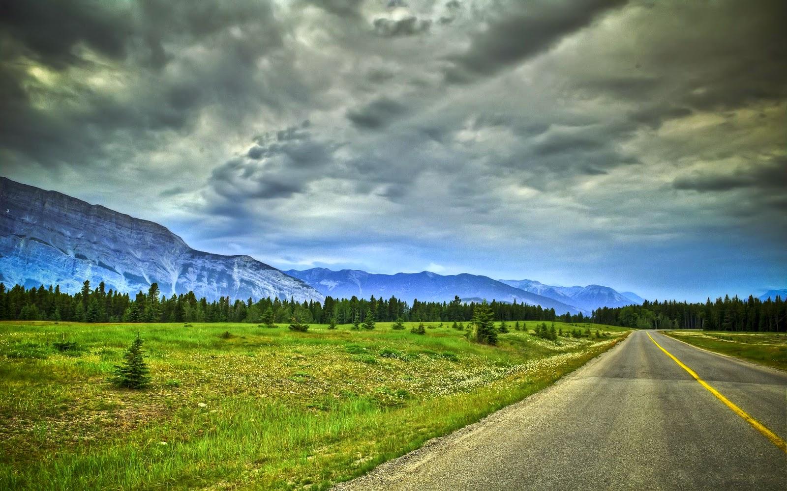 Road Widescreen