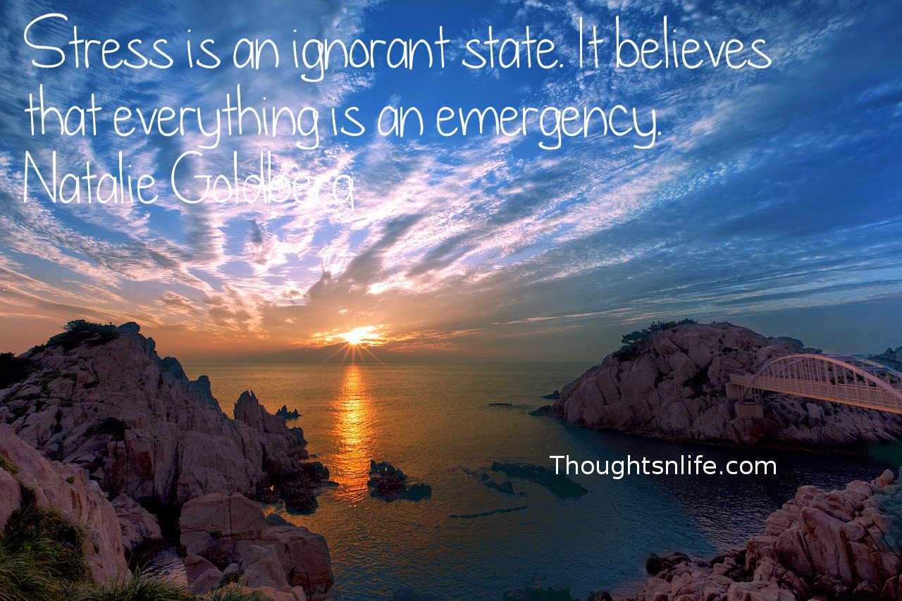Thoughtsnlife.com: Stress is an ignorant state. It believes that everything is an emergency. Natalie Goldberg