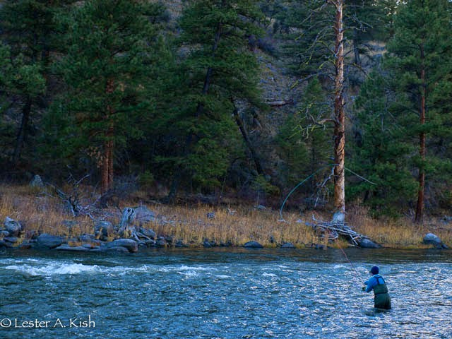 Angler spey casting, Salmon River, Idaho