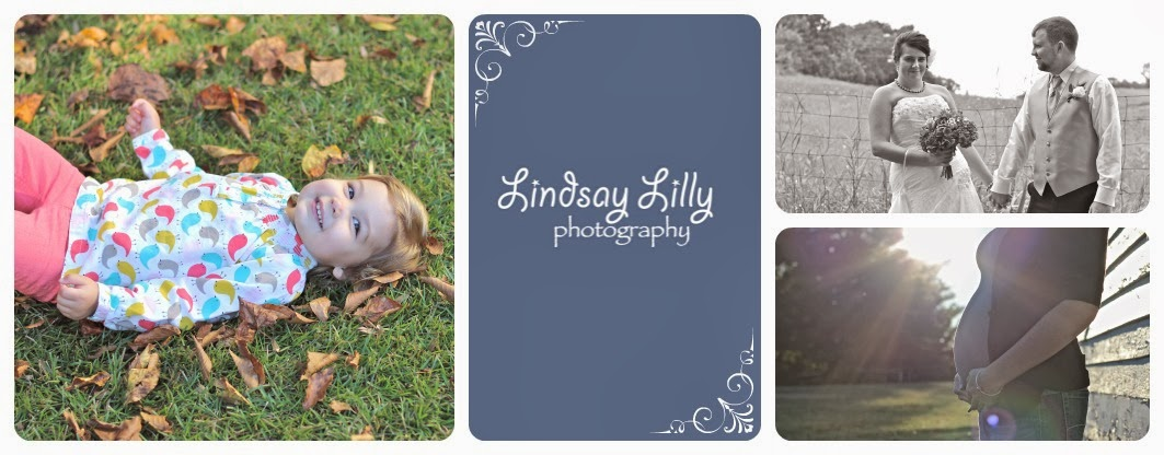 Lindsay Lilly Photography