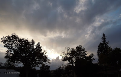 Sky Above Paso Robles Inn Coffee Shop Between Rain Storms, © B. Radisavljevic