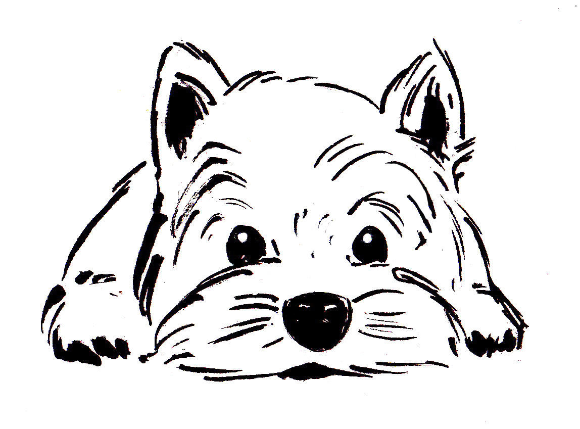 Michelle tran 39 s sketchblog august 2012 for Westie coloring pages