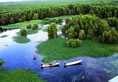 Thưởng ngoạn những khu rừng đẹp nhất Việt Nam3