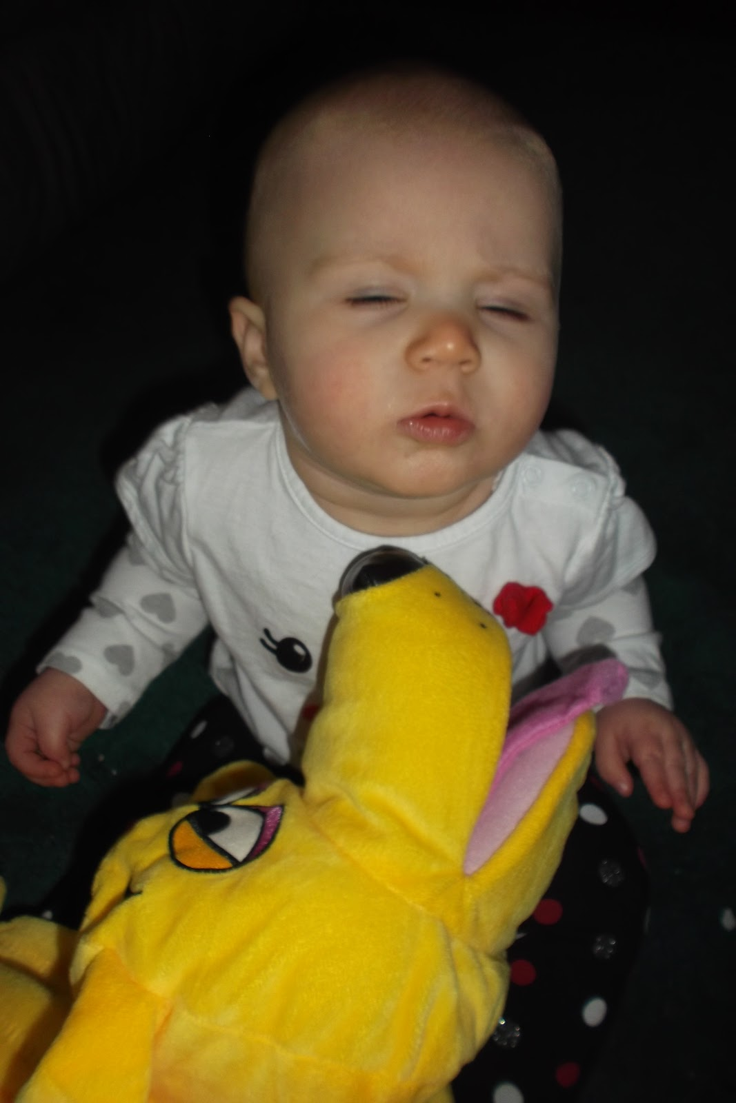 http://4.bp.blogspot.com/-E5OYbzJssUs/UKUvla2CcmI/AAAAAAAAFOw/CPFHW_ggw3Y/s1600/CuddleUppets%2BDog.jpg