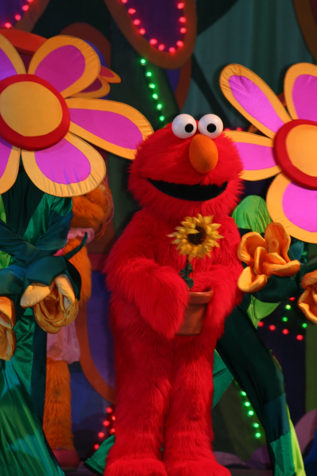 Elmo Sesame Street Sesame street live. elmou0026#39;s