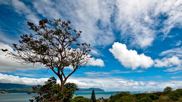 Viewpoint Keaalu Kanehoe