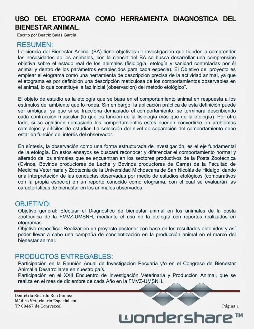 Asombroso Plantilla De Objetivos Anuales Elaboración - Ejemplo De ...