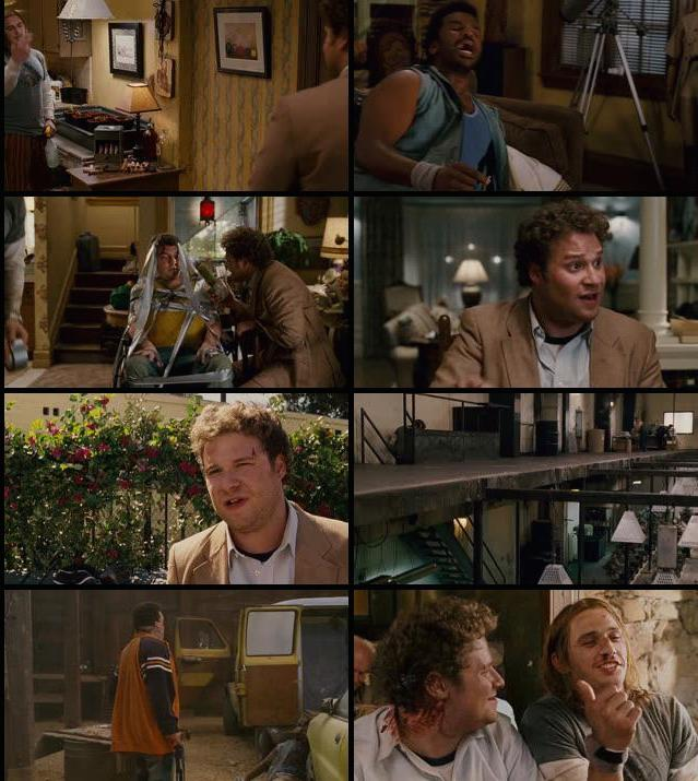 Pineapple Express 2008 UNRATED Dual Audio Hindi 720p BluRay