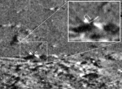 Moon Aliens