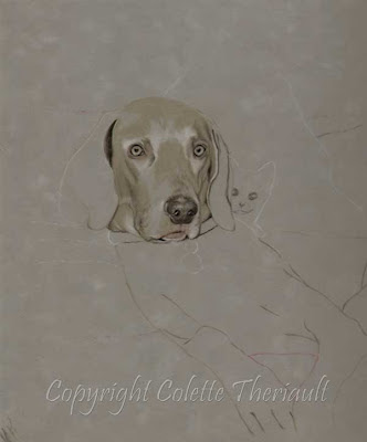 pet portrait commission by animal Artist Colette Theriault