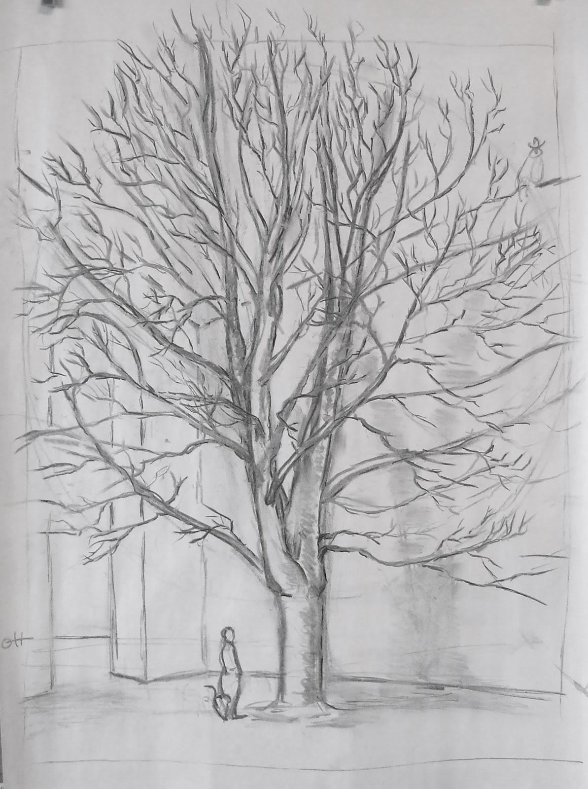 Tips en tekenles tekenles bomen tekenen - Hoe een boom te verlichten ...