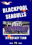 Next Blackpool Seagulls Match
