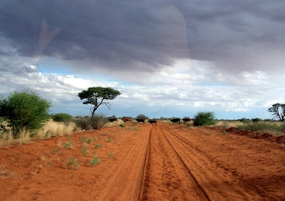 http://www.namibiareservations.com/gobabise.html