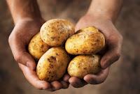 tips diet sehat dengan jus kentang