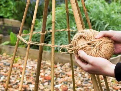 опора, пирамида, обелиск, для вьющихся растений, для фасоли, для горошка, для томатов, для помидор, для подсолнухов, для вьюнков, своими руками, как сделать