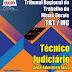 Apostila Concurso TRT-MG 2015 - Técnico Judiciário - Área Administrativa