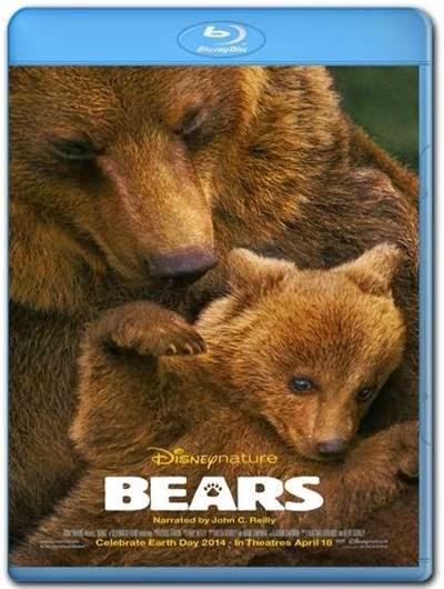 Ursos AVI BDRip Dual Audio + Bluray 720p e 1080p