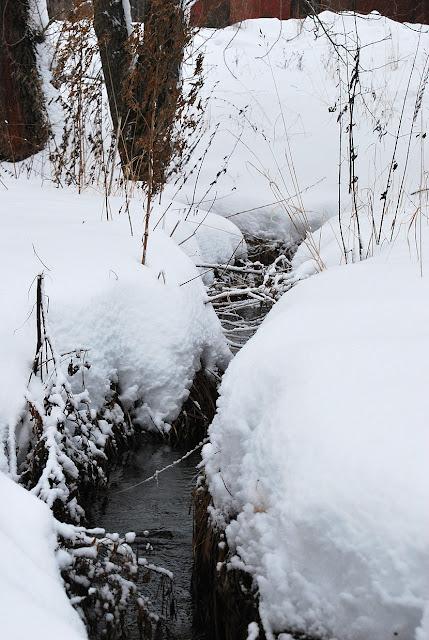 Снежная Лысьва