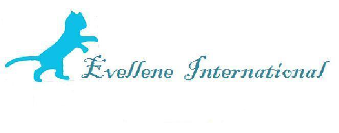 Evellene International