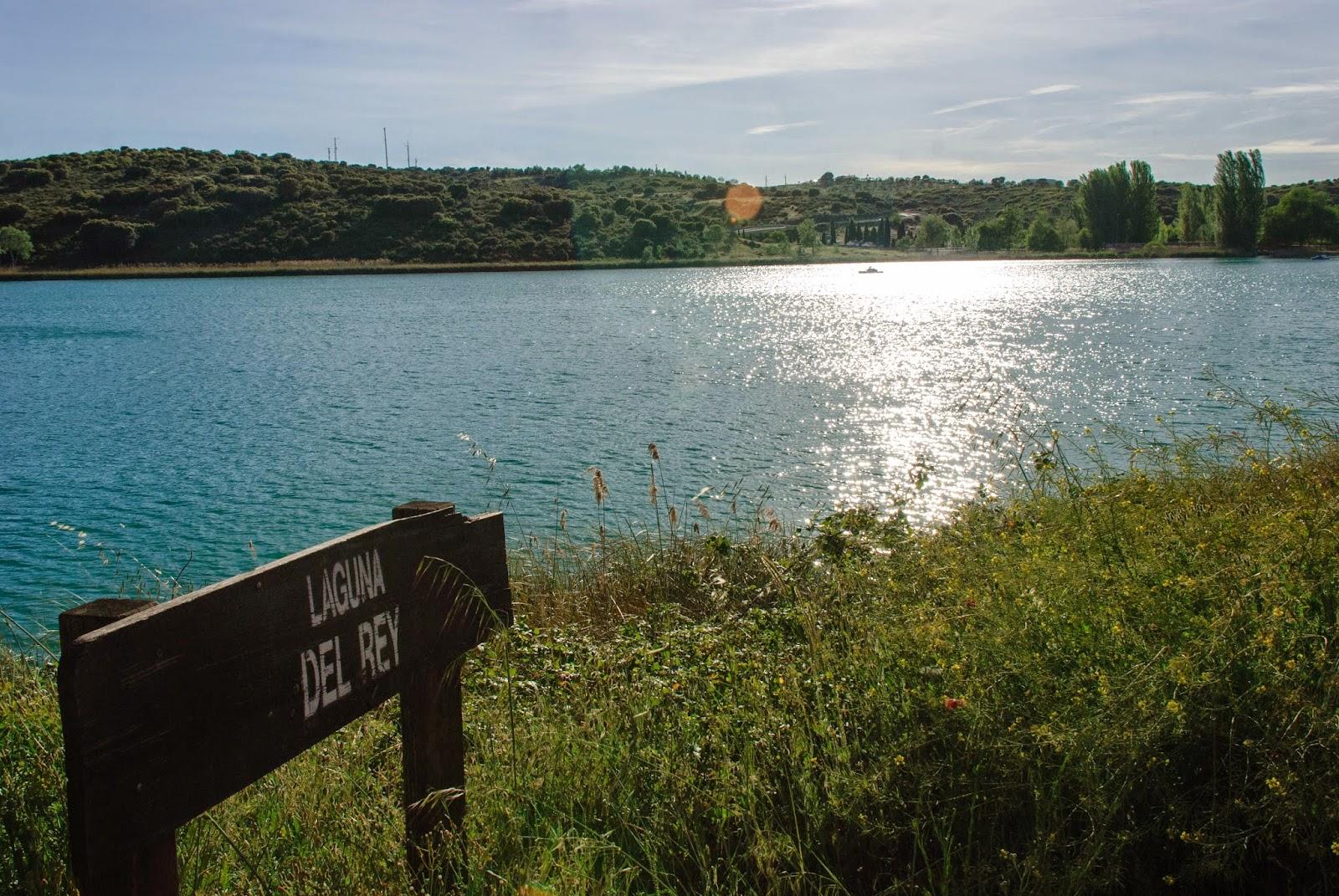 Laguna del Rey, Lagunas de Ruidera