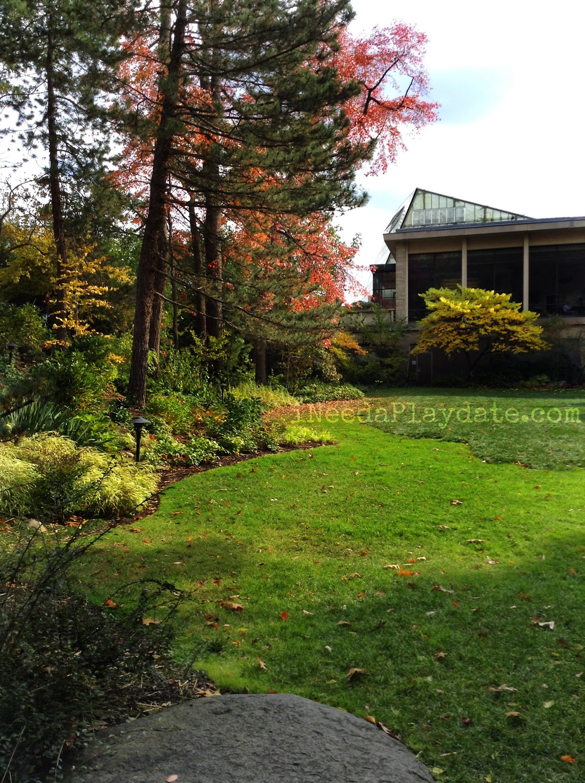 It 39 S Colorfall At The Cleveland Botanical Gardens Ineed A Playdate