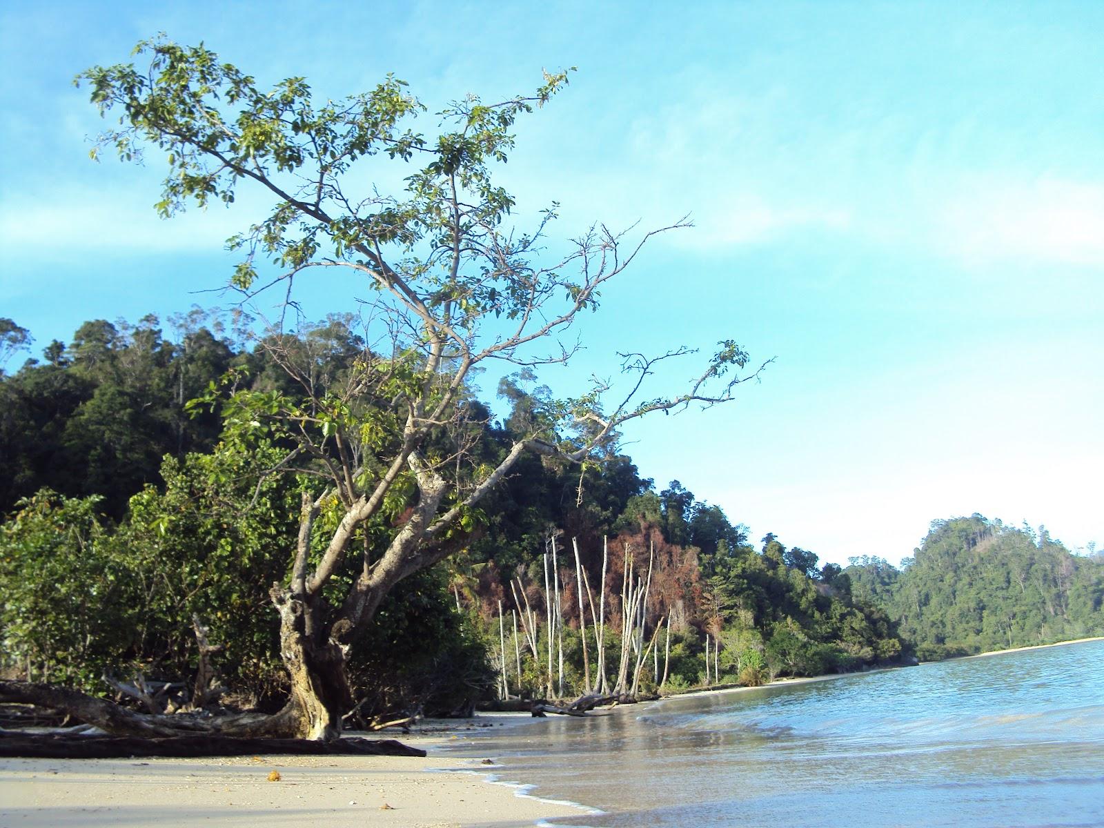 pantai jerong di kabupaten pesisir selatan,kec IV jurai yang masih