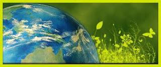 consumo ecologico