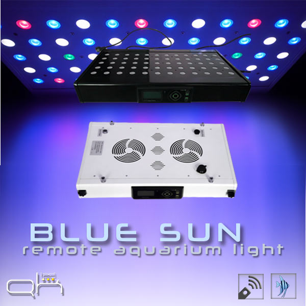 eclairage led pour aquarium lampe led blue sun. Black Bedroom Furniture Sets. Home Design Ideas