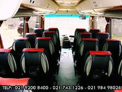 Interior Medium 25-31 Seat