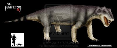 Lophorhinus