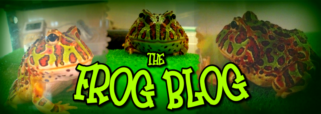 The Frog Blog